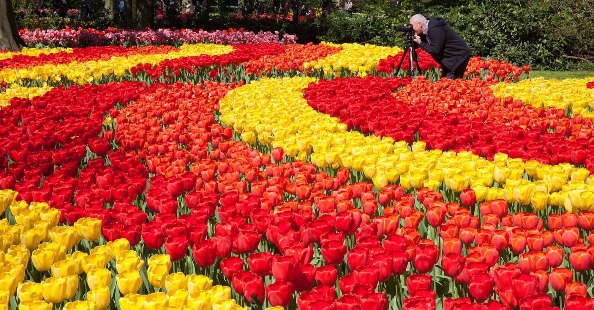 workshop fotografie Keukenhof bloemen fotograferen