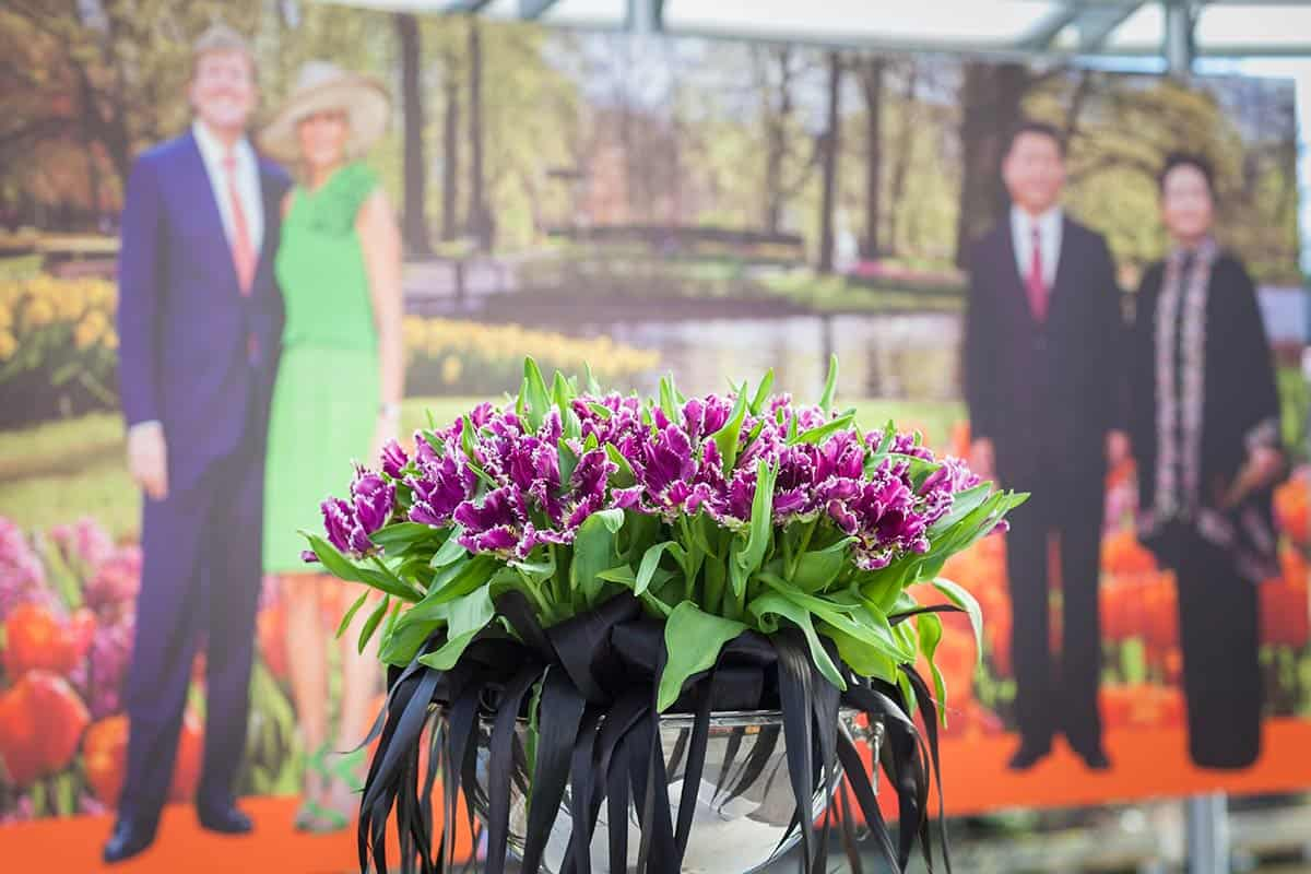 Tulipa Cathay nieuwe tulp doop Keukenhof 23 maart 2014 China Peng Liyuan tulip