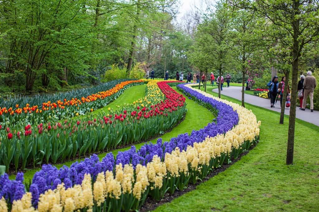 Keukenhof photography 2014 Netherlands dutch tulips