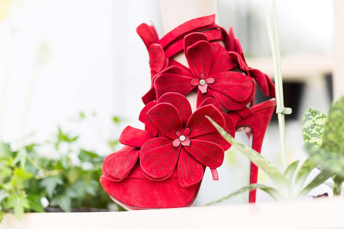 Orchid Shoe Jan Jansen Keukenhof