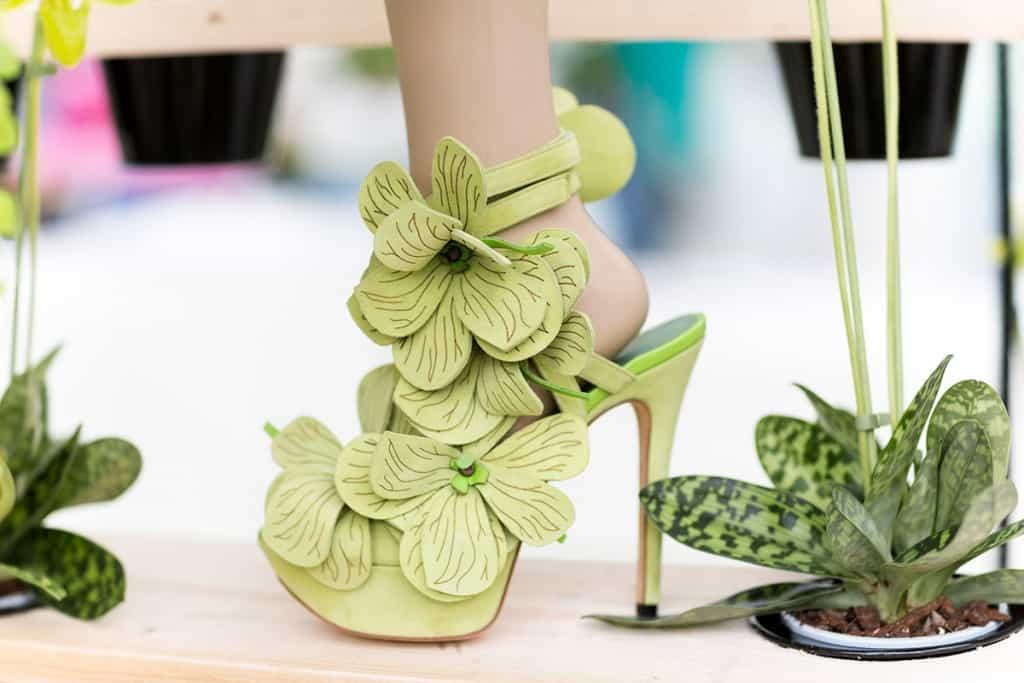 Orchid shoe jan jansen keukenhof fotografie - Professionele keukenhoed ...