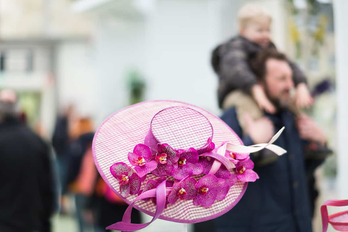 Orchidee hoed / Philip Treacy Orchid Hat