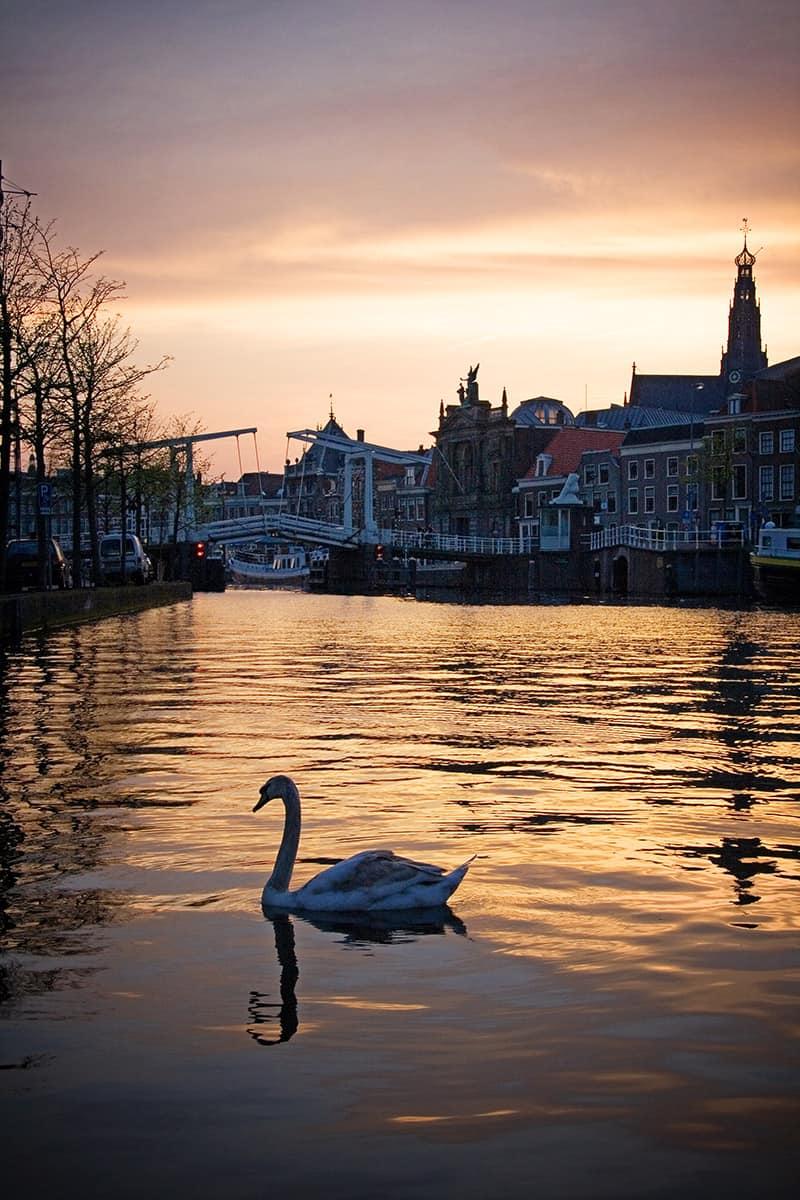 Spaarne photo Haarlem