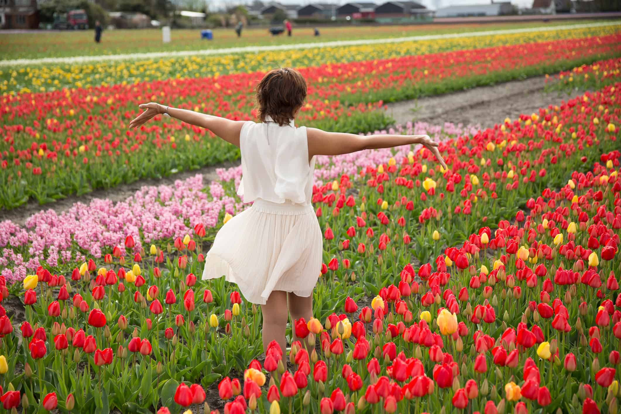 woman flower fields Holland